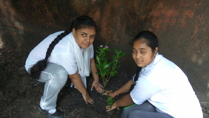 ​​Independence Day Celebration and Tree Plantation 2017